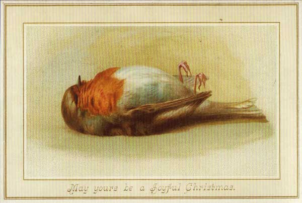 Dead robin printed on front of Christmas card